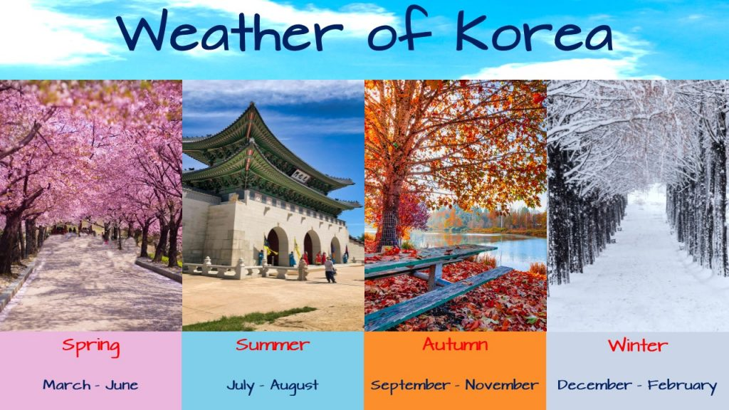 Best time to visit korea travel guide