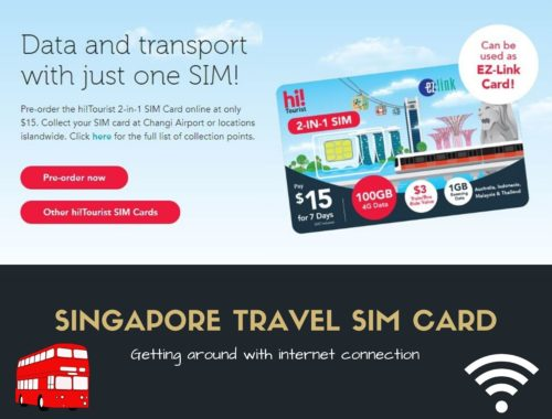 Singtel Sim Card