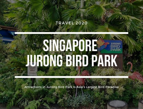 Singapore Jurong Bird Park Attractions