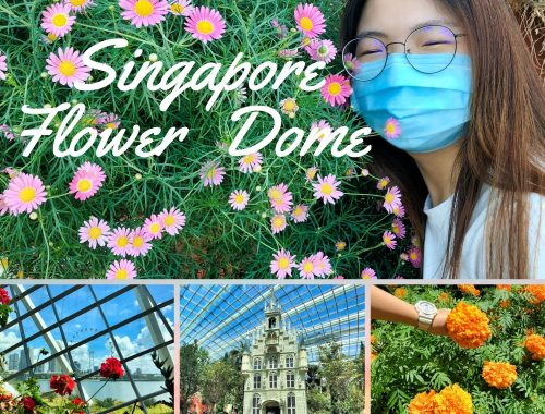 Singapore Flower Dome View